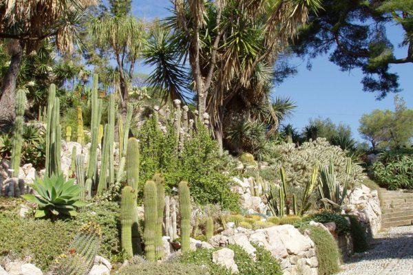 Giardini Hambury Ventimiglia | Appartamenti Casa Alice - Affitto Appartamenti Vacanze - Affitto Casa Vacanze